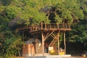 treehouse at Back of Beyond
