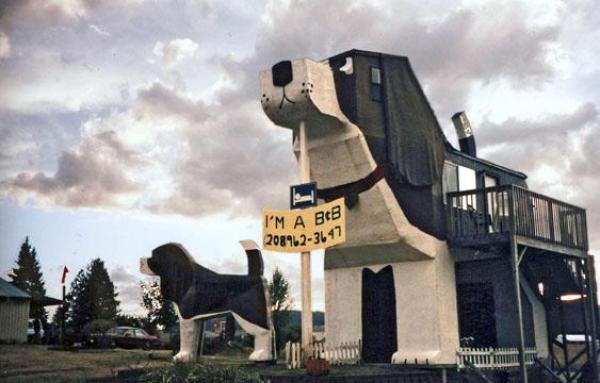 dog shaped B&B