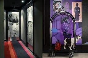 art filled corridors