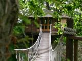 Bensfield treehouse