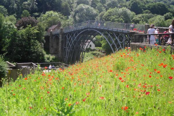 Famous Iron Bridge in Summer