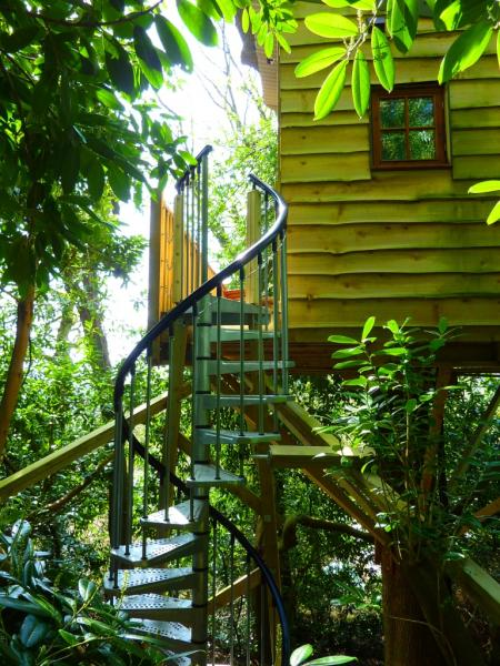 Spiral stairs to the treehouse