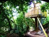 The Nest treehouse