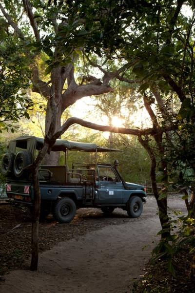 Safari game drive vehicles