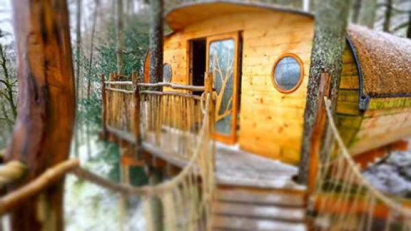 treehouse experience vouchers