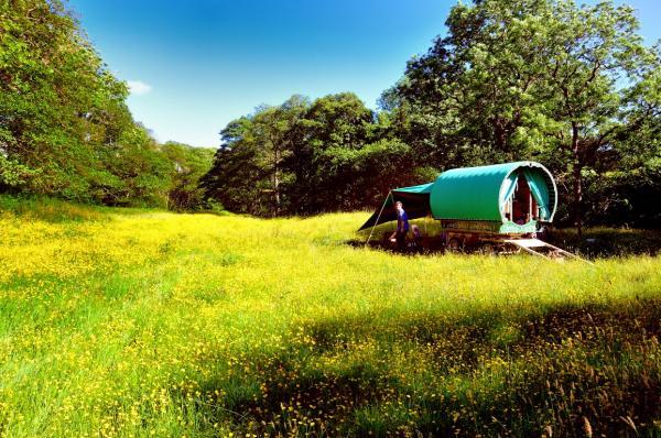 Cumbrian gyspy caravan holidays