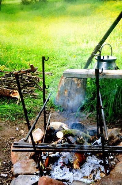 cook on the campfire