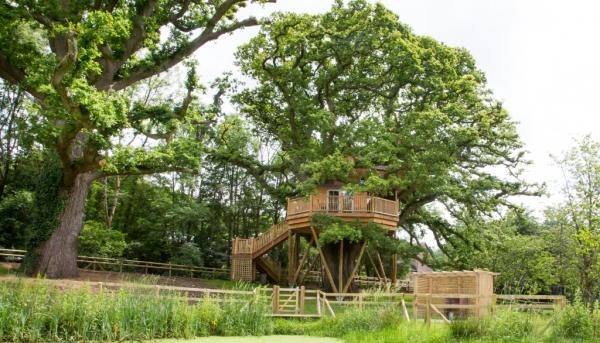 looking across to the treehouse
