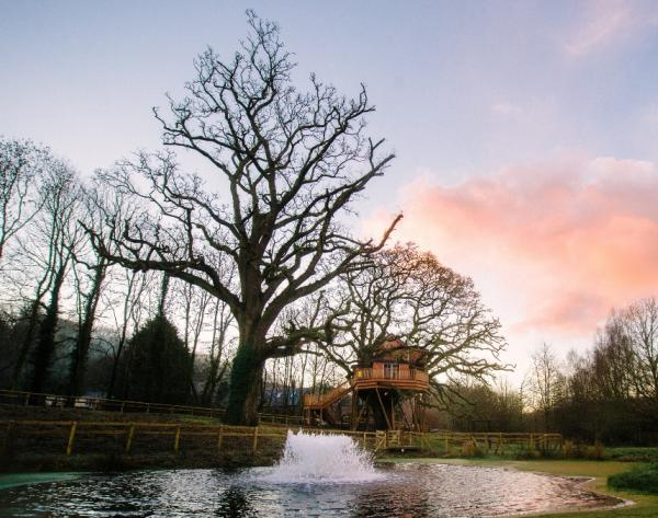 the treehouse in winter