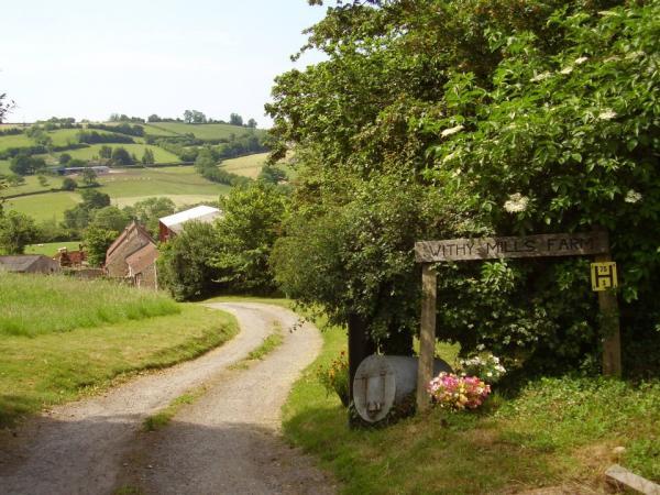 Withy Mills Farm