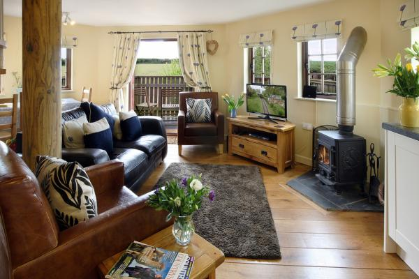 cosy sitting room with TV and woodburner