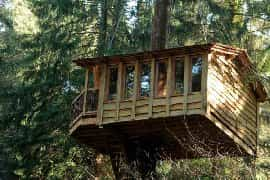 wooden treehouse accommodation