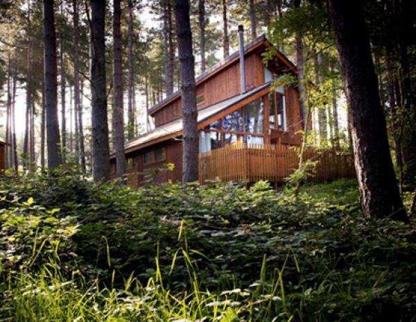 eco luxury cabins