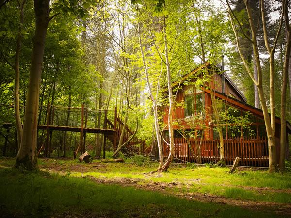 Thorpe Forest woodland cabins