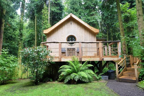 the treehouse in woodland