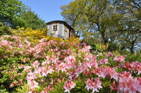The Woodmans Hut