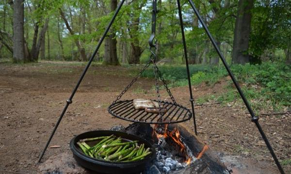 firepit in your woodland setting